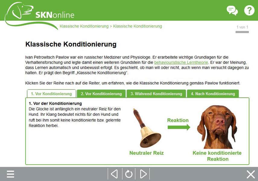 Sachkundenachweis, Hundekurs, SKN-Kurs, online Hundeschule