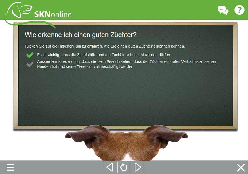Sachkundenachweis, SKN Kurs, online Hundeschule, Hundekurs