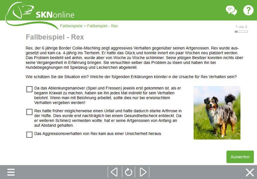 SKN Kurs, Sachkundenachweis Hund, online Hundeschule, Hundekurs