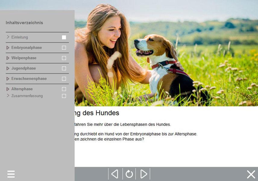 Online Hundeschule, Sachkundenachweis Hund, Hundekurs