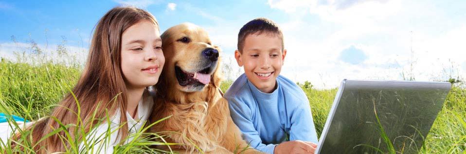 Sachkundenachweis Hunde, SKN Kurs, online Hundeschule, Hundetrainer
